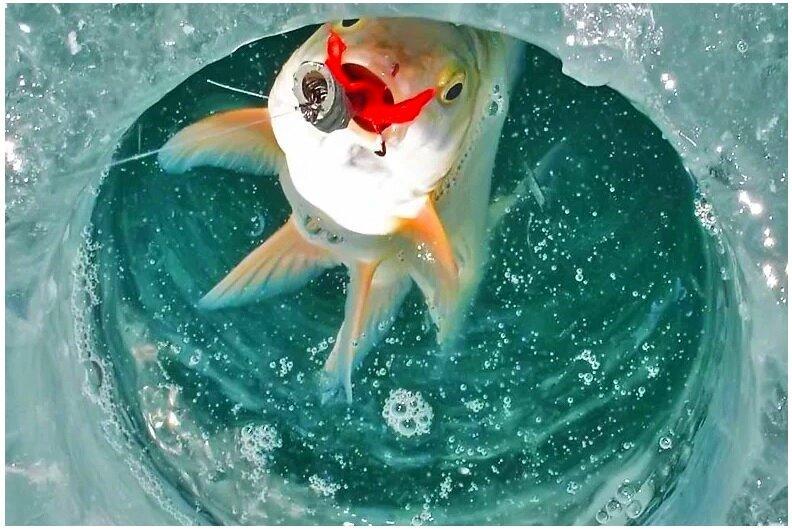 Календарь рыбака на март. Нюансы ловли рыбы в марте