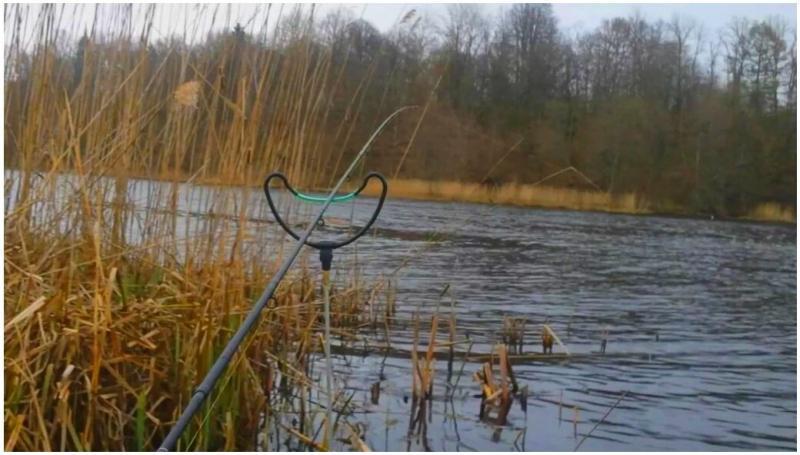 Календарь рыбака на апрель. Нюансы ловли рыбы в апреле