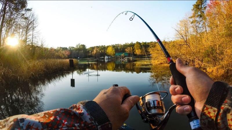 Ловля сазана весной. Секретная наживка от опытных рыбаков.