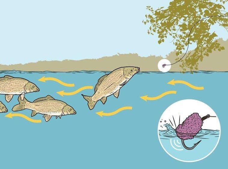 Уловистая приманка, о которой не знает большинство рыболовов