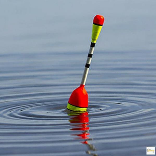 Весенний сазан ч.1: поплавочная снасть.