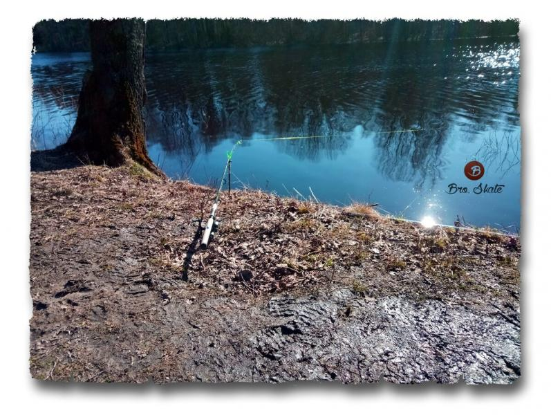 Вести с водоемов. Рыбалка на фидер март.