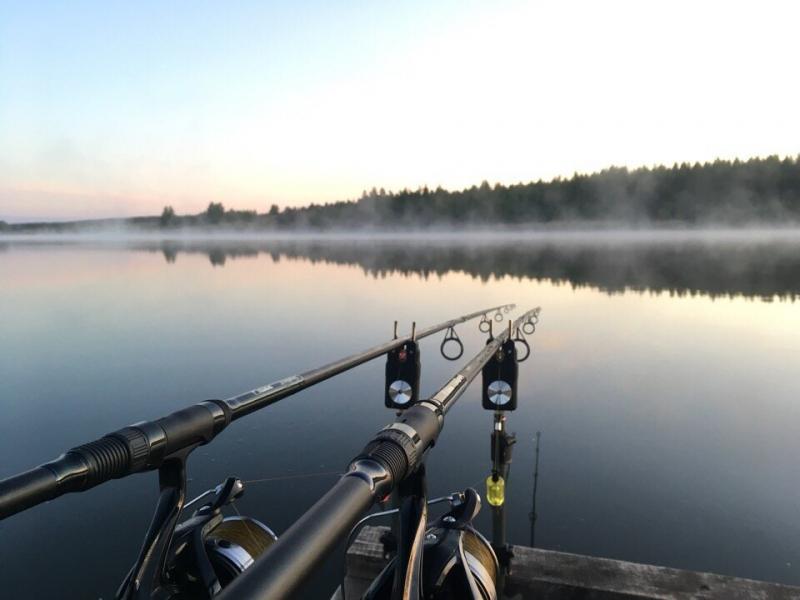 На что смотреть, выбирая удилище для карповой рыбалки: бывает ли дешево и качественно?