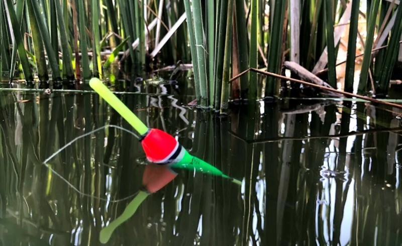 Оснастка на 2 крючка для ловли на разной глубине в толще воды