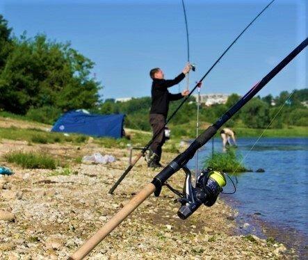 Почему не клюет на фидер - 5 ошибок, которые делает большинство рыболовов