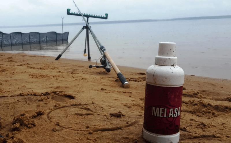 Причины, почему меласса должна быть у каждого рыбака на летней рыбалке.