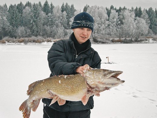 Рассказываю историю, как я поймал огромную щуку зимой.