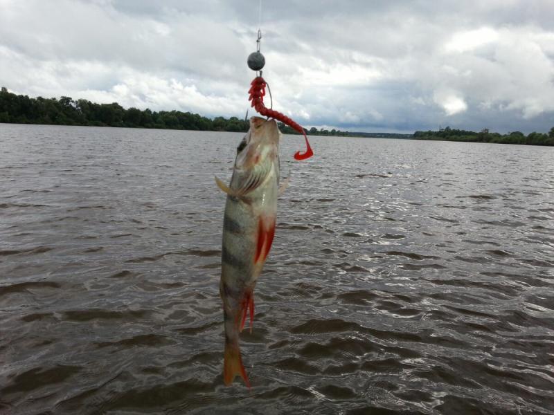 Результативная рыбалка
