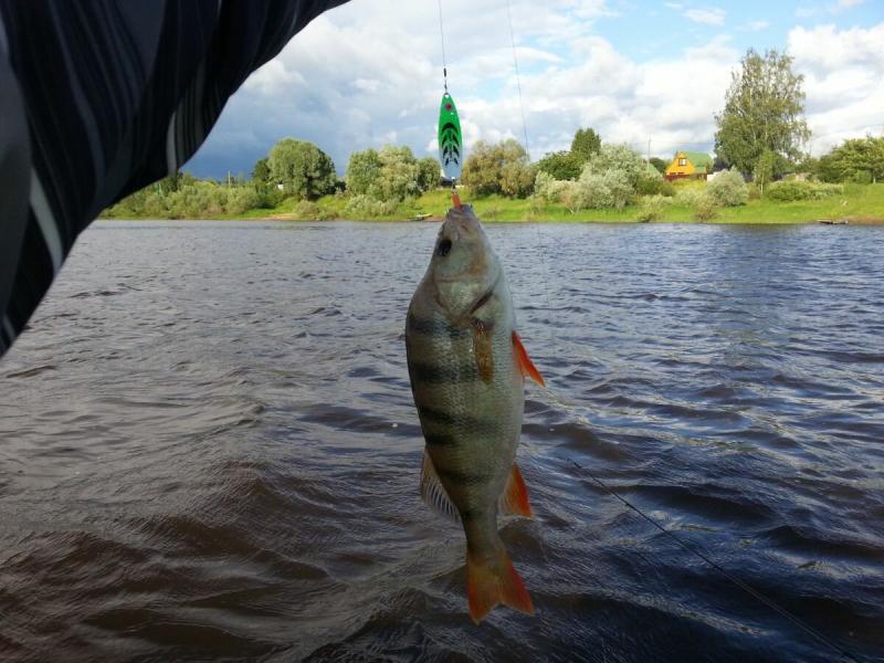 Рыбалка на воблеры