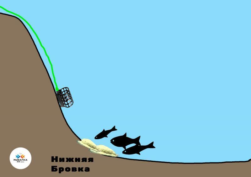 Единственное место на реке, где рыба обитает практически постоянно