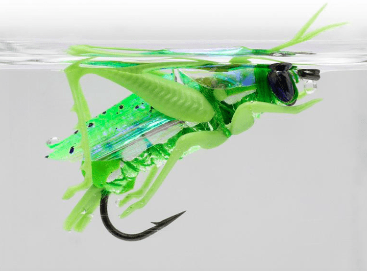 Почему рыба клюет на кузнечика? Главная приманка лета