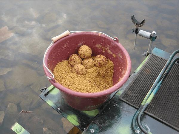 Провокация рыбы: как увеличить улов?