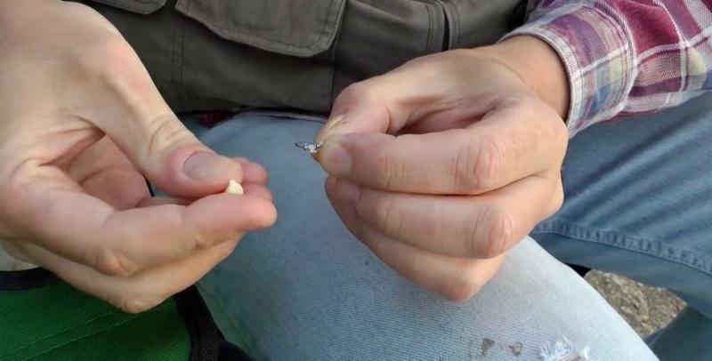 Как правильно насадить хлеб на крючек. Опытные рыбаки тоже совершают ошибки при насадке хлеба.