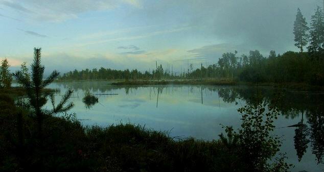 Лучшие места для рыбалки в Ленинградской области, Свирь.