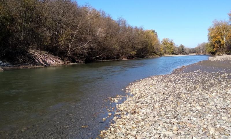 Рассказываю в каких местах на горных реках гарантировано обитает голавль: делюсь личным опытом