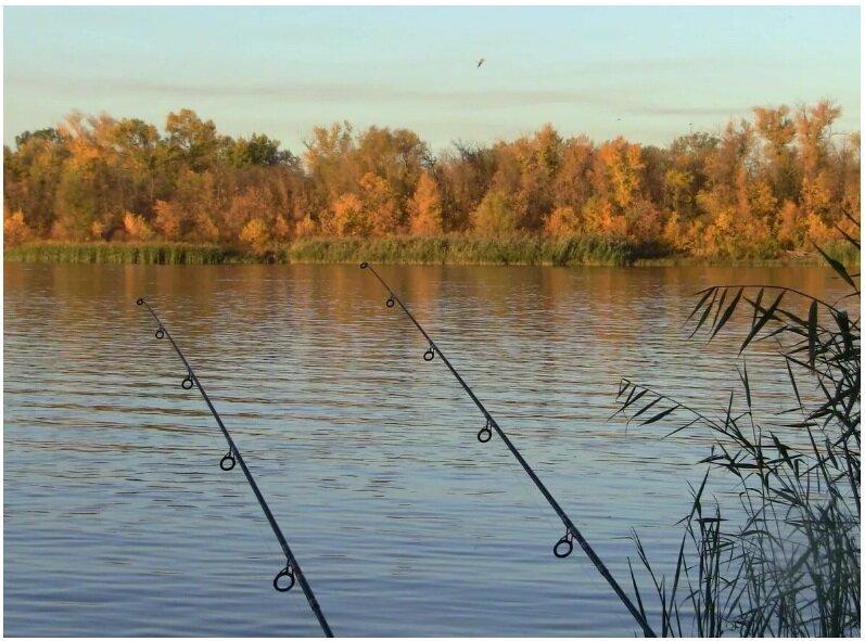 Календарь рыбака на сентябрь