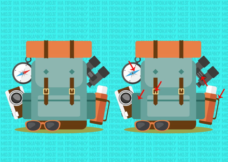 Найдите 5 отличий у походных рюкзаков. 💼 Проверка Вашей внимательности
