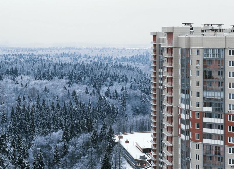 Жить в городе и каждый день наслаждаться лесным воздухом. Думаете, такого не бывает?