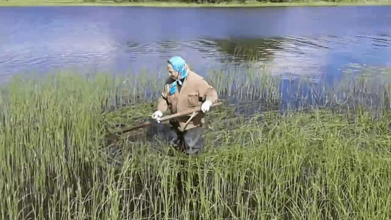 Очень уловистый способ при ловле на спиннинг. А мужики то и не знают...
