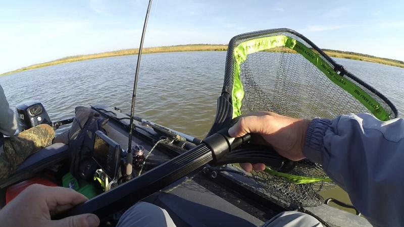Подсак для трофейной рыбалки от BFT - дороговато, но стоит того?