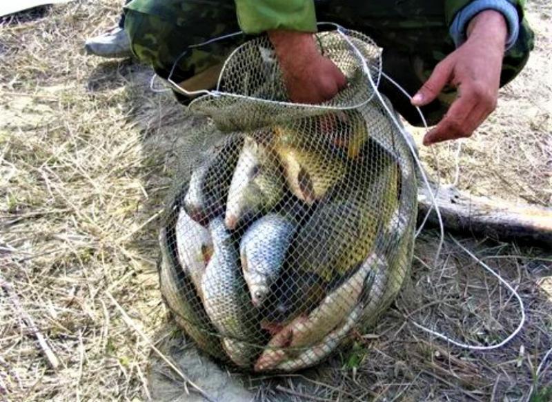 Полный садок за 2 часа - нашел приманку которая, как конфетки для рыбы, только успевал вываживать