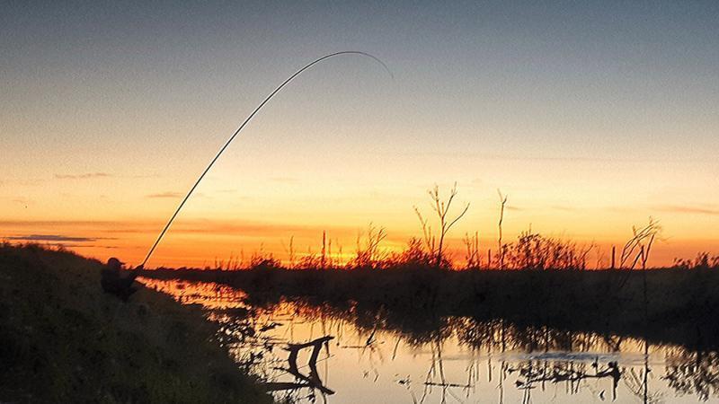 Выбор длины удилища для ловли карася