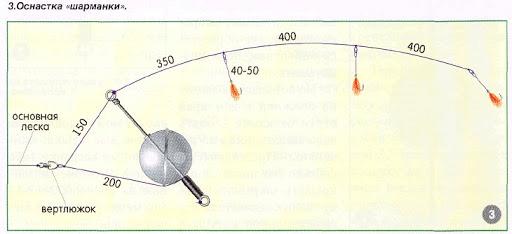 Для успешной ловли леща зимой нужно знать механизм стайного поведения этой рыбы