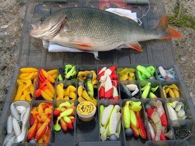 Идем на рыбалку за окунем но сначало выбирем цвет приманки
