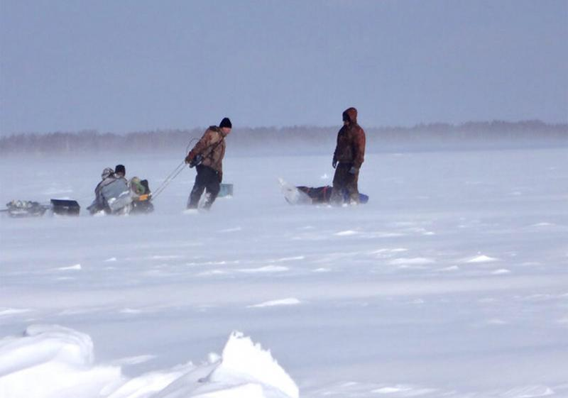 Ловля карася зимой со льда. 10 советов начинающим пингвинам