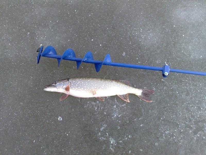 Ловля щуки со льда. Что необходимо знать рыболову?
