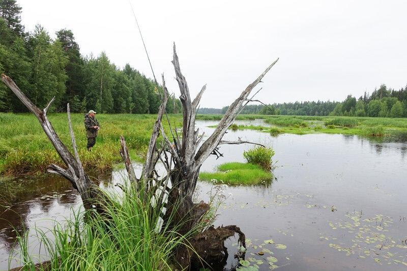 Незацепляйки для щуки на мелководье