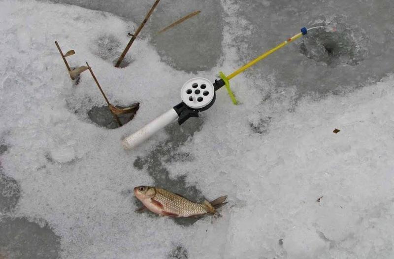 Особенности ловли карася со льда