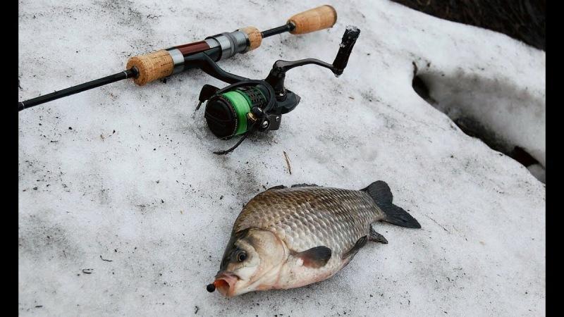 Раньше думал,что зимняя рыбалка со льда самая дешевая,но как же я ошибался