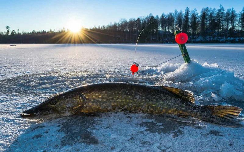 Календарь рыболова на декабрь
