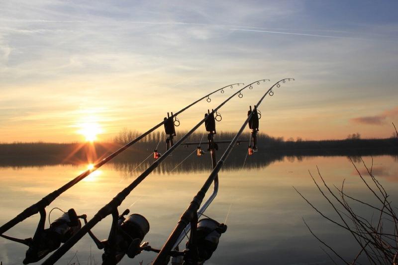 Новичок на рыбалке. Чем отличается фидерное удилище от карпового?