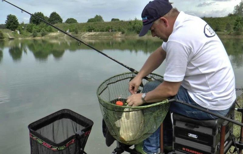 Рыбалка для новичков. Чем отличается фидерное удилище от карпового?