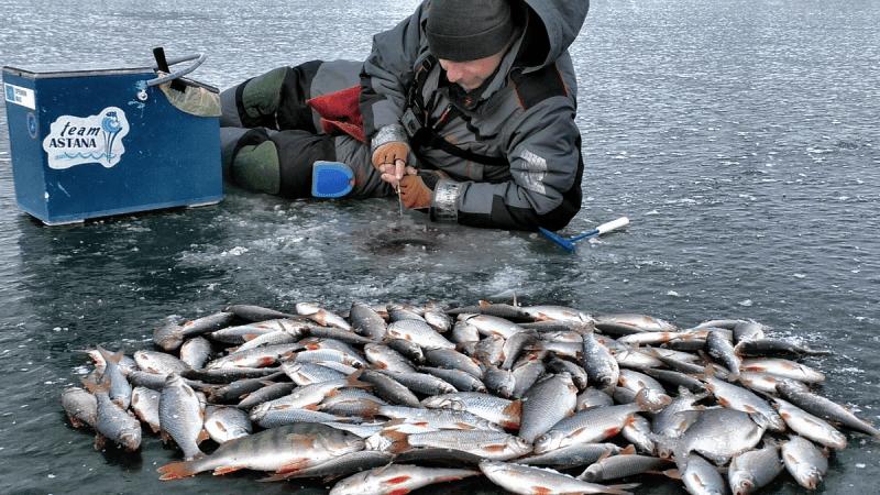 Секреты ловли плотвы зимой. Применяй эти 5 советов и лови в удовольствие.