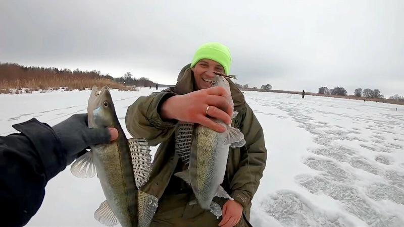 Зимняя ловля судака. Чтобы вернуться домой с уловом, следует соблюдать основные моменты ловли судака