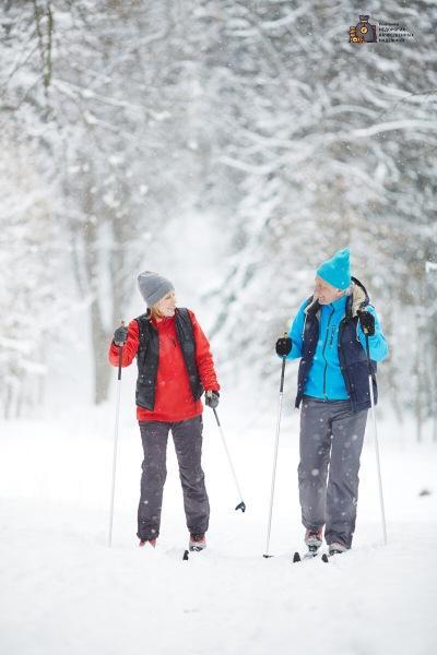 Лучшие беговые лыжи. Какую модель выбрать?