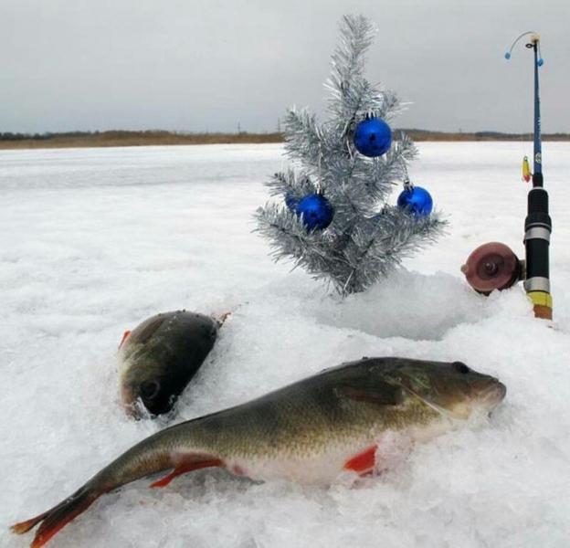 С Новым годом рыбаки!
