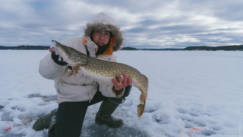 Зимняя рыбалка во всей красе. Как выбрать балансир?
