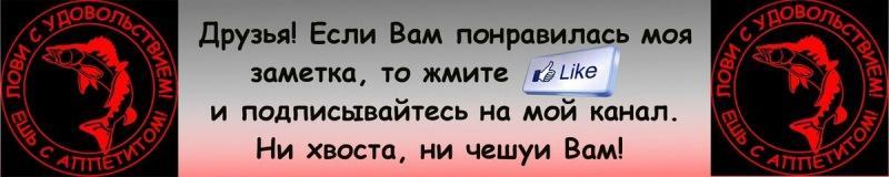 Блесна за 10 рублей тоже ловит окуня и при этом, неплохо