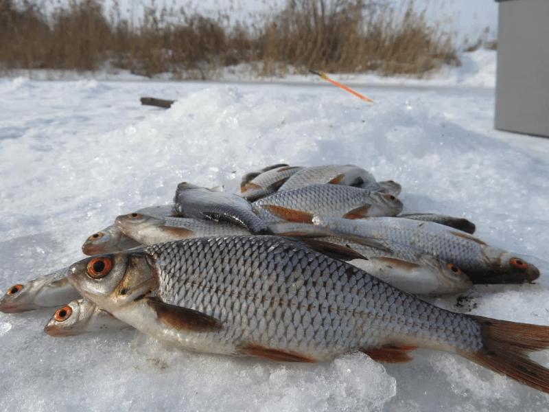 """""""Хитрый"""" и в то же время простой приём опытных рыболовов при ловле рыбы со льда"""