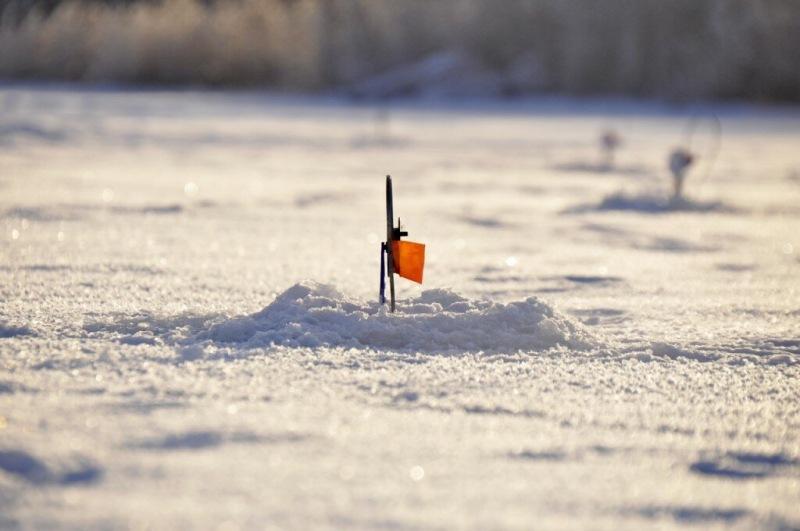 Необычный способ ловли на жерлицы