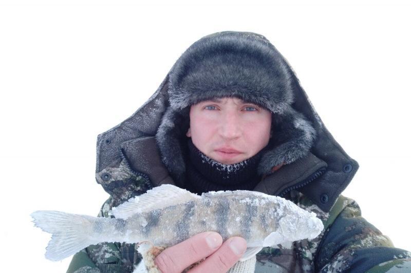 Особенности раттлина (виба) и техники ловли, которые должен знать каждый рыболов