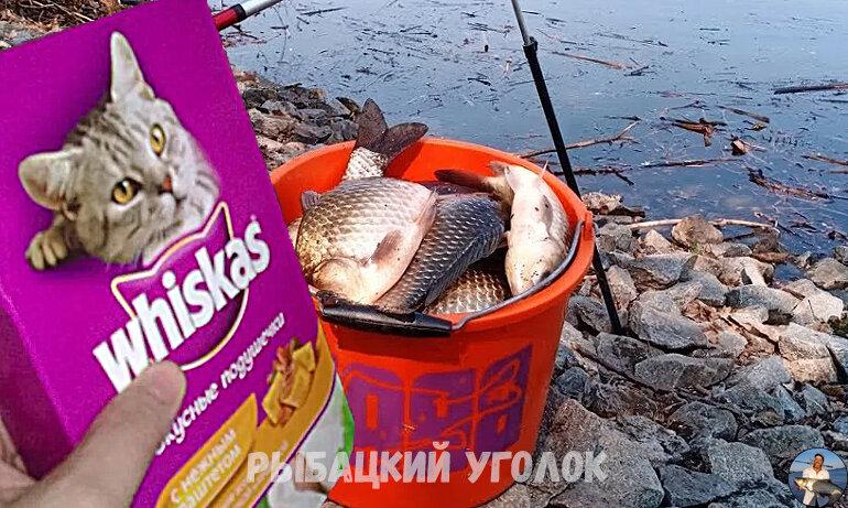 """Удивился когда узнал для чего опытный рыбак всегда берет с собой на рыбалку корм """"Whiskas"""", теперь делаю также. Делюсь хитростью"""