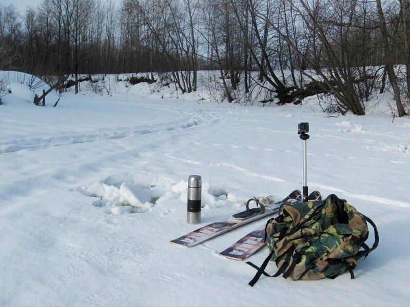 Жор налима в феврале. Как ловить русскую треску