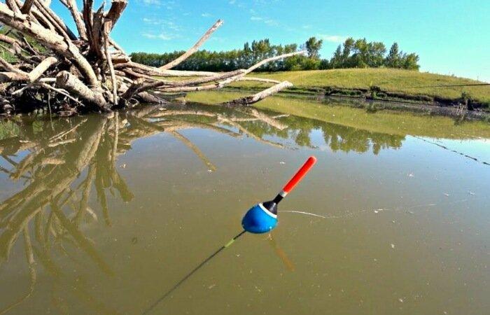 Как правильно ловить рыбу весной. Советы рыболовам