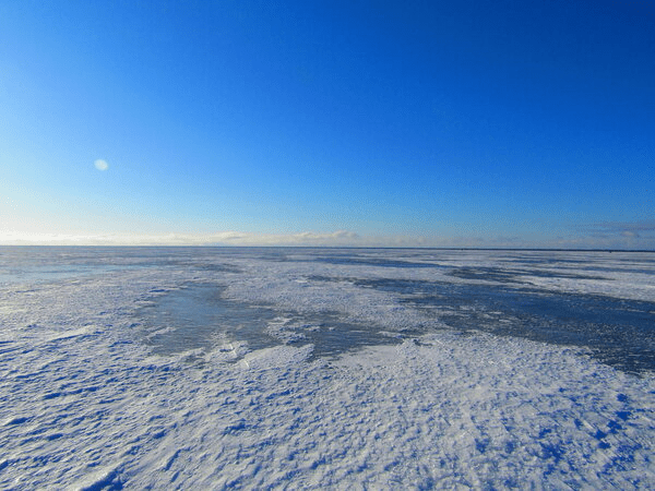 "Отчеты: Зимний сезон 2021 от ""блеснюк"""
