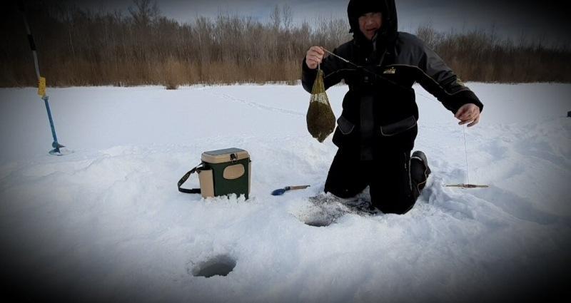 Поставил в лунку кошель, а ниже сел рыбачить. Показываю результат